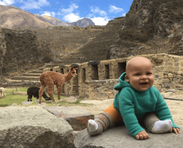 alpacas-baby-jpg