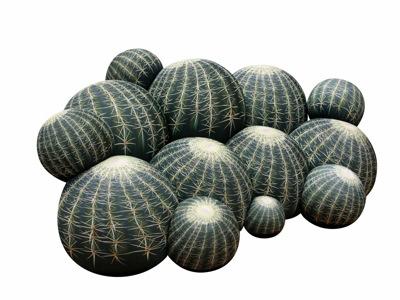 Cb canape cactus