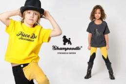 shampoodle-pirouette-2
