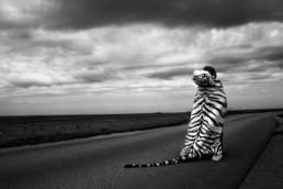 Anna Hurtig Photography