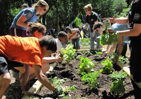 Children Gardening -