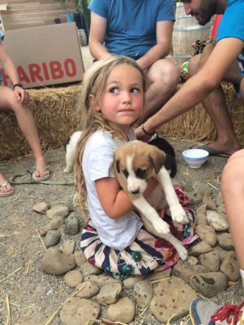 Hattie- 4 1/2 puppy love - holiday pic