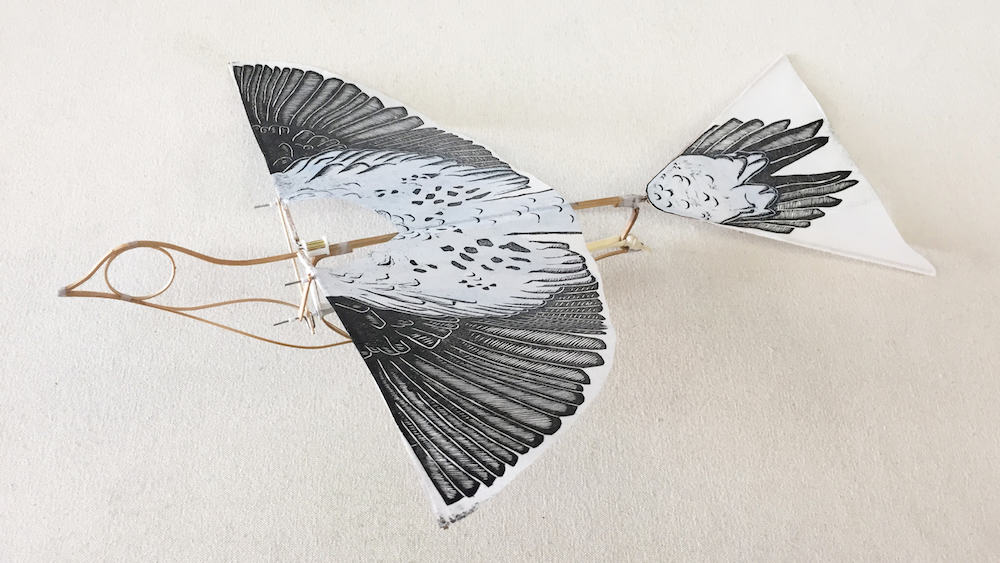 The Flying Martha by Haptic lab a flapping flying pigeon toy, artist edition